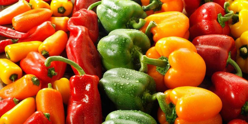 What Are The Advantages Of Growing Bell Peppers From Scraps